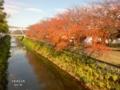 [京都][天神][風景][川面][しだれ桜][円山][東山魁夷]天神川 秋