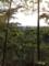 都会の田園風景
