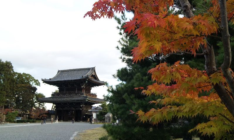 [嵐山][京都]