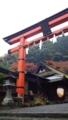 [京都][嵯峨野]