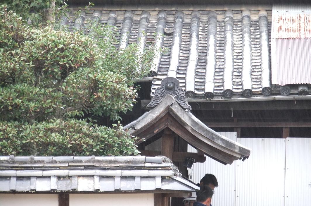 [今井邸][丸亀][古民家]