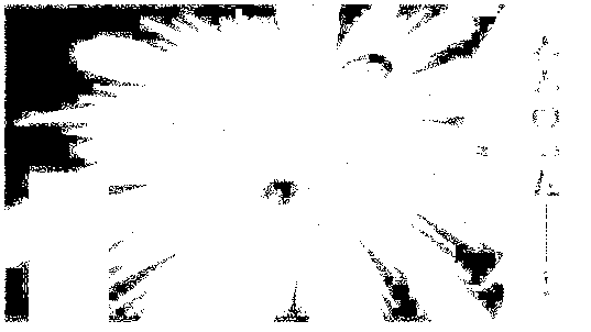 f:id:baumkuchen:20160210003808p:plain