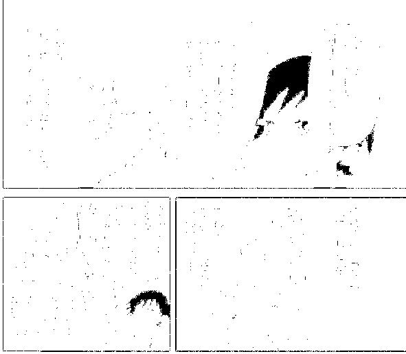 f:id:baumkuchen:20170205223007p:plain