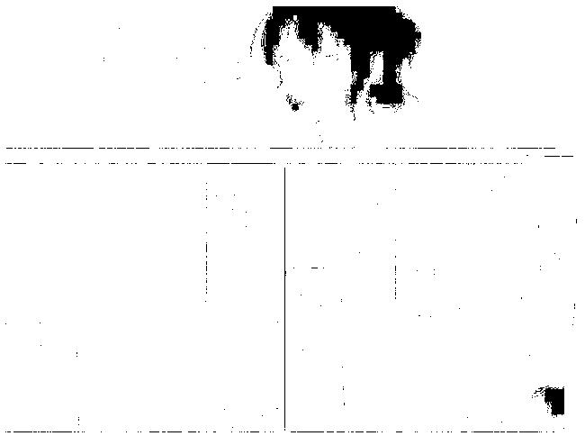 f:id:baumkuchen:20170208234055p:plain