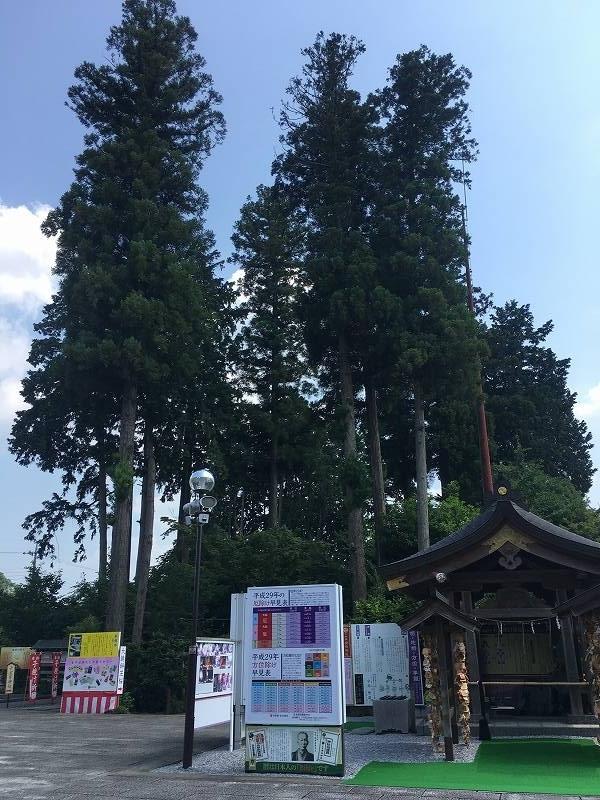 f:id:beamer-cabin:20170710123049j:plain