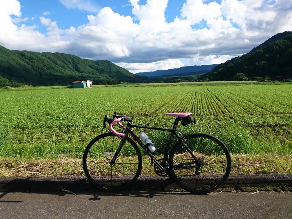 f:id:bean_cyclehorse:20170820200007j:plain