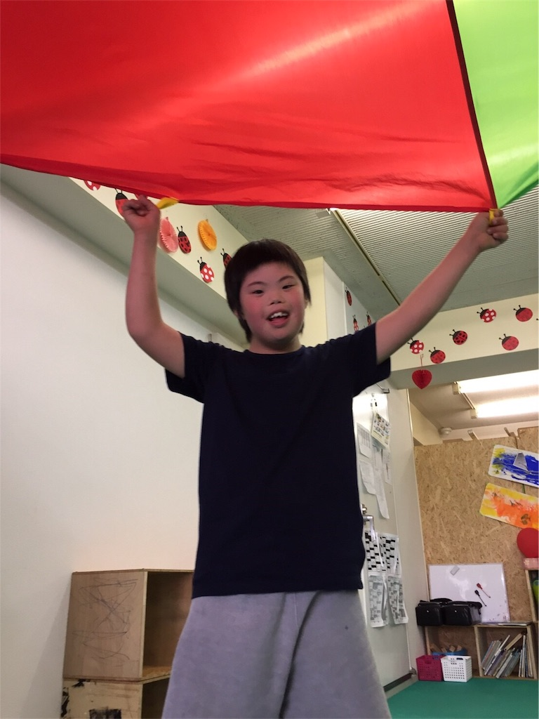 f:id:beans_mame-niwa:20170530221403j:image