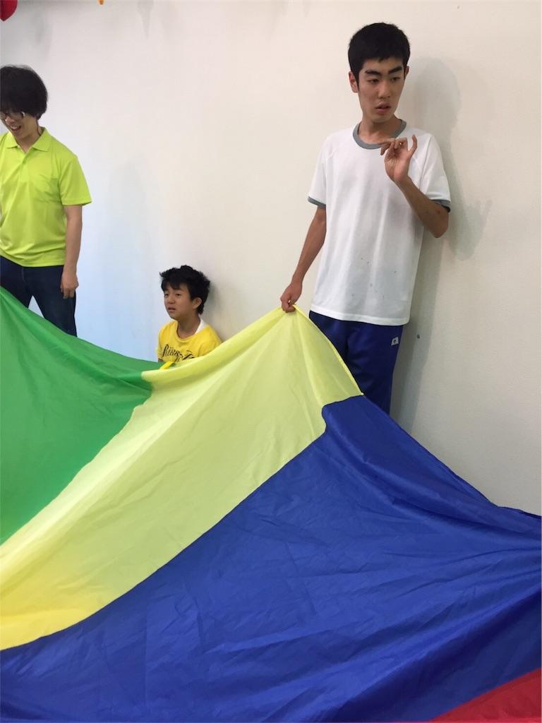 f:id:beans_mame-niwa:20170530221413j:image