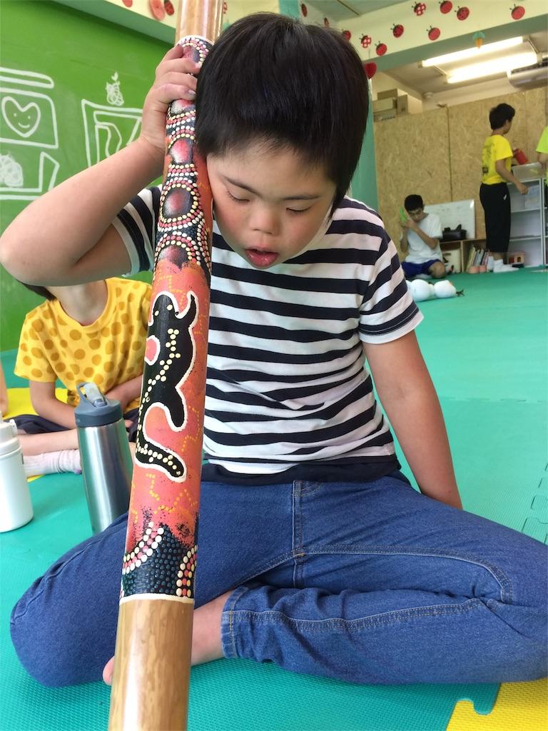 f:id:beans_mame-niwa:20170627091739j:image