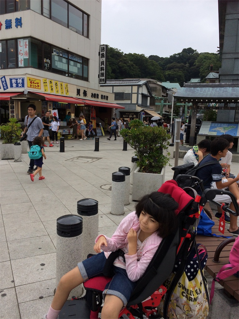 f:id:beans_mame-niwa:20170821205501j:image