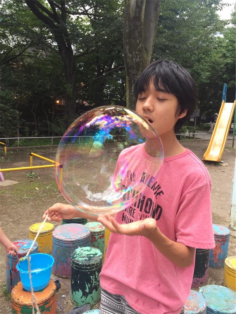 f:id:beans_mame-niwa:20170903123436j:image