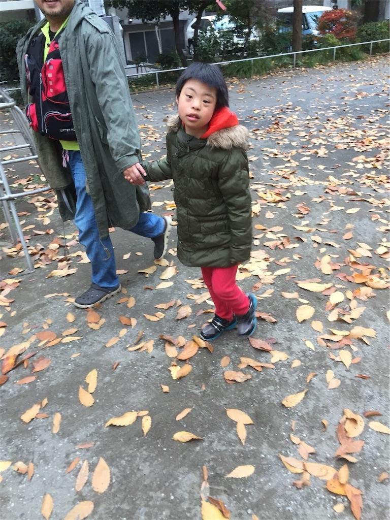 f:id:beans_mame-niwa:20171202090737j:image
