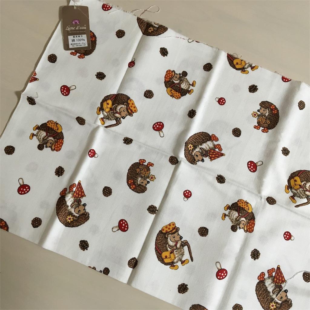 f:id:bear-princes-gardens24566:20161226185919j:image