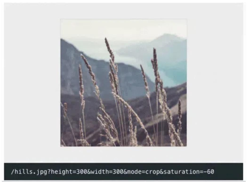 f:id:beartail:20200119092837j:plain