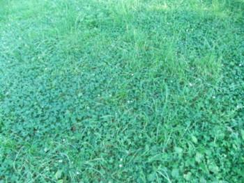 f:id:beatjw:20110710165522j:image