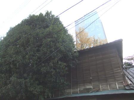 f:id:beatjw:20111117160537j:image