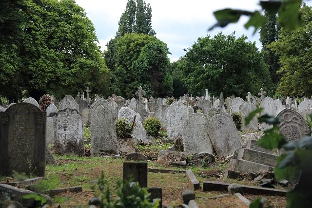 荒らされた墓