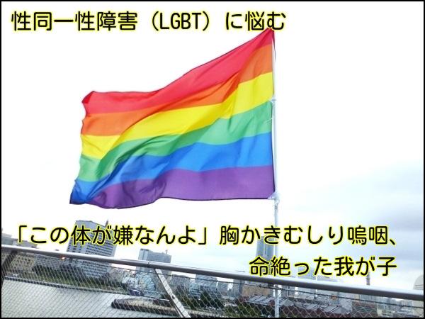 性同一性障害(LGBT)に悩む-「この体が嫌なんよ」胸かきむしり嗚咽、命絶った我が子