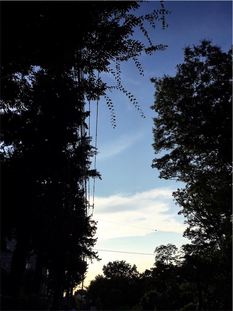 f:id:beauty-sky:20160805204013j:image