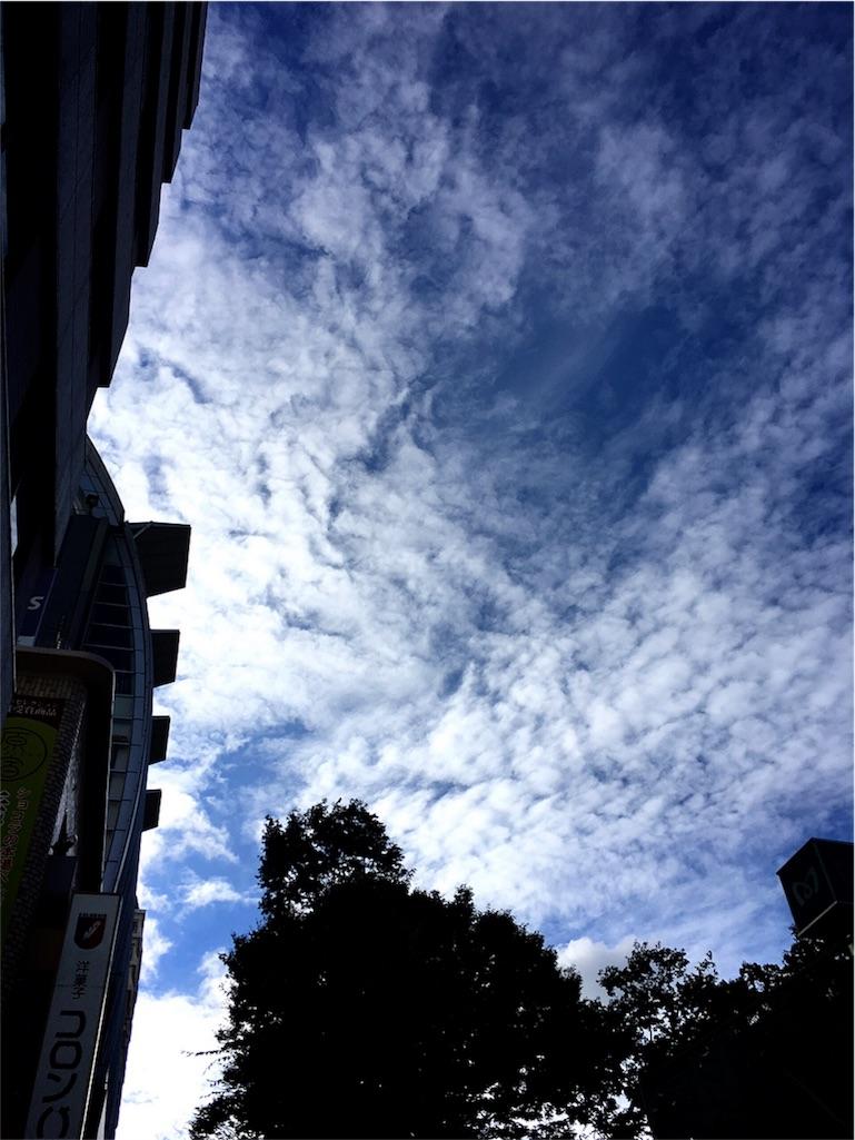 f:id:beauty-sky:20160905214123j:image