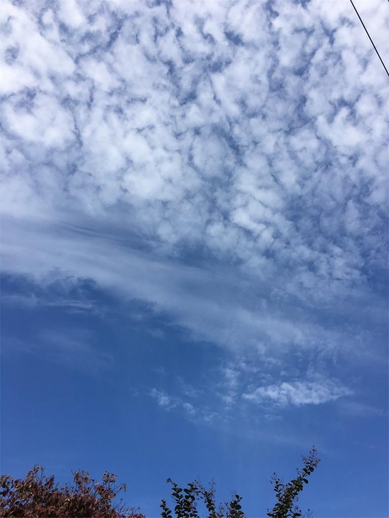 f:id:beauty-sky:20161101033324j:image