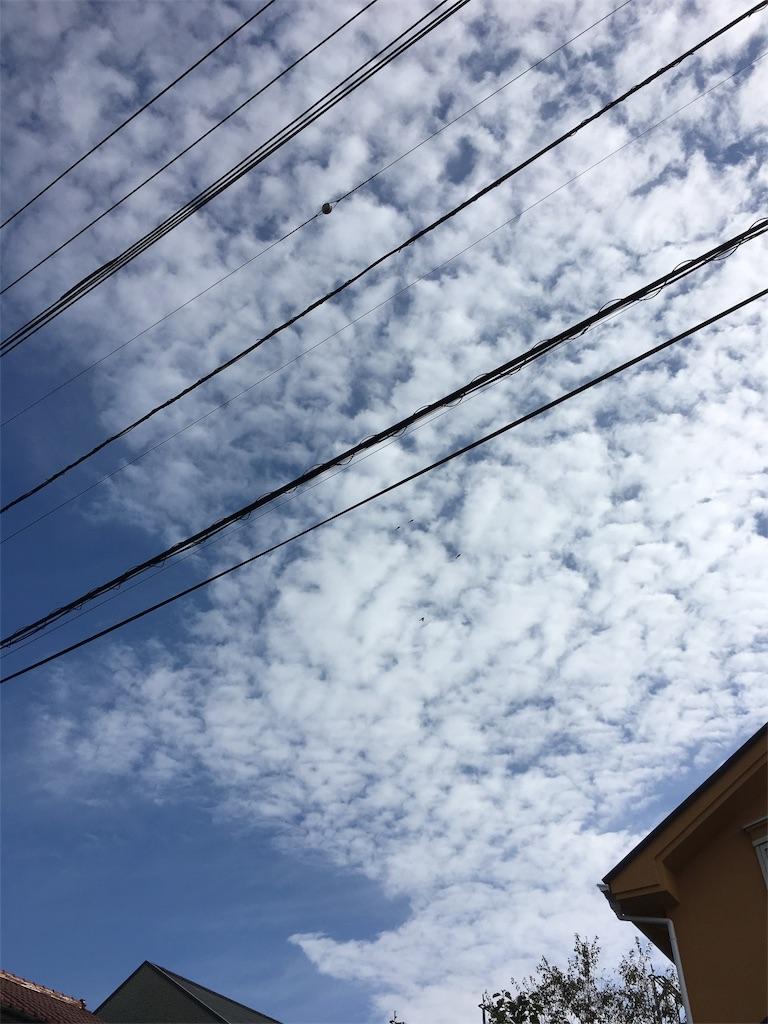 f:id:beauty-sky:20161101033332j:image