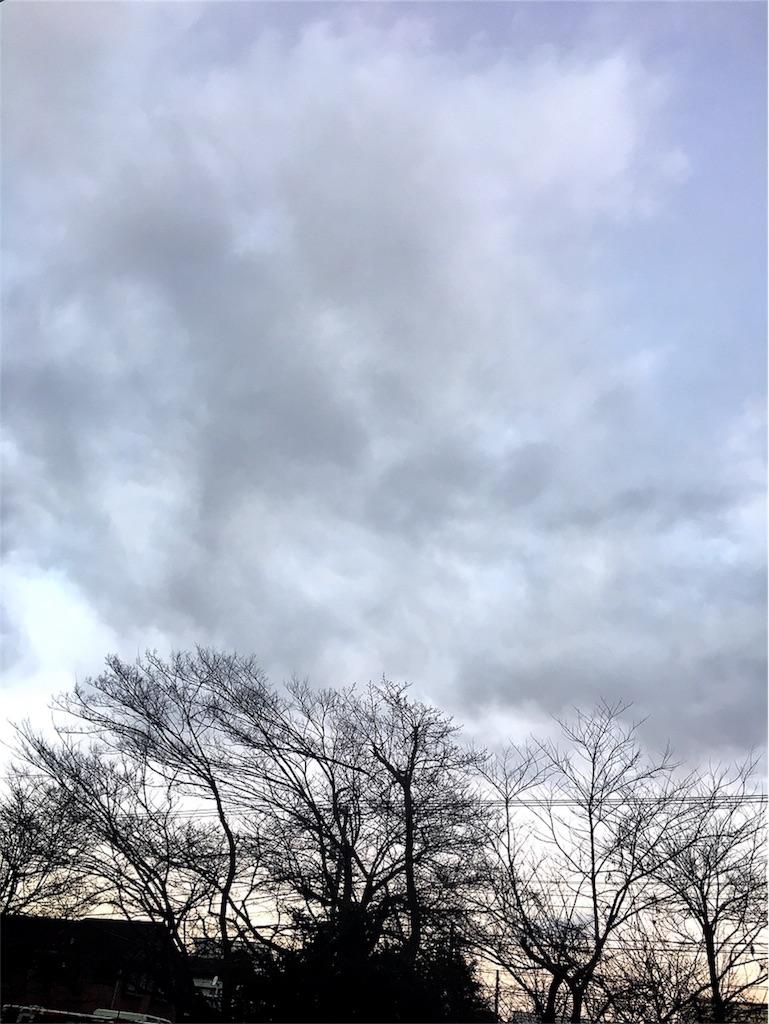 f:id:beauty-sky:20170113170146j:image