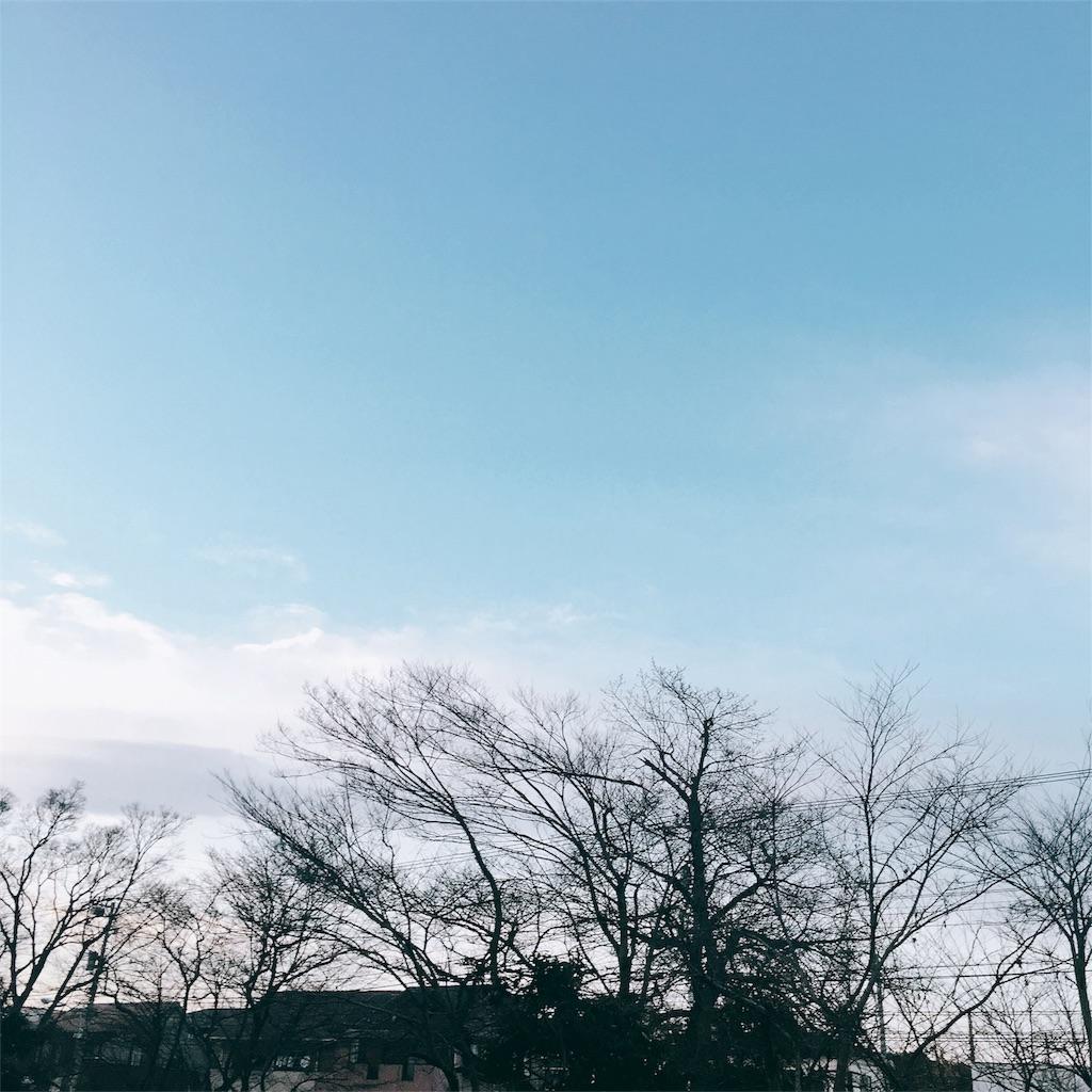 f:id:beauty-sky:20170205225815j:image