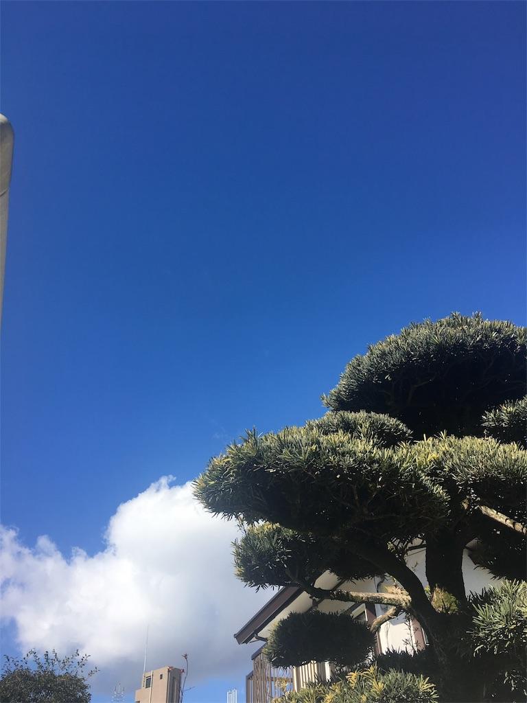 f:id:beauty-sky:20170211030751j:image