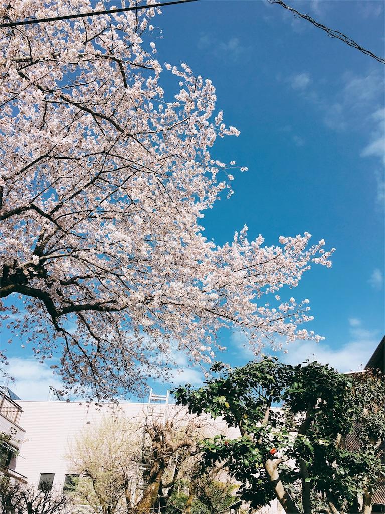 f:id:beauty-sky:20170410113102j:image