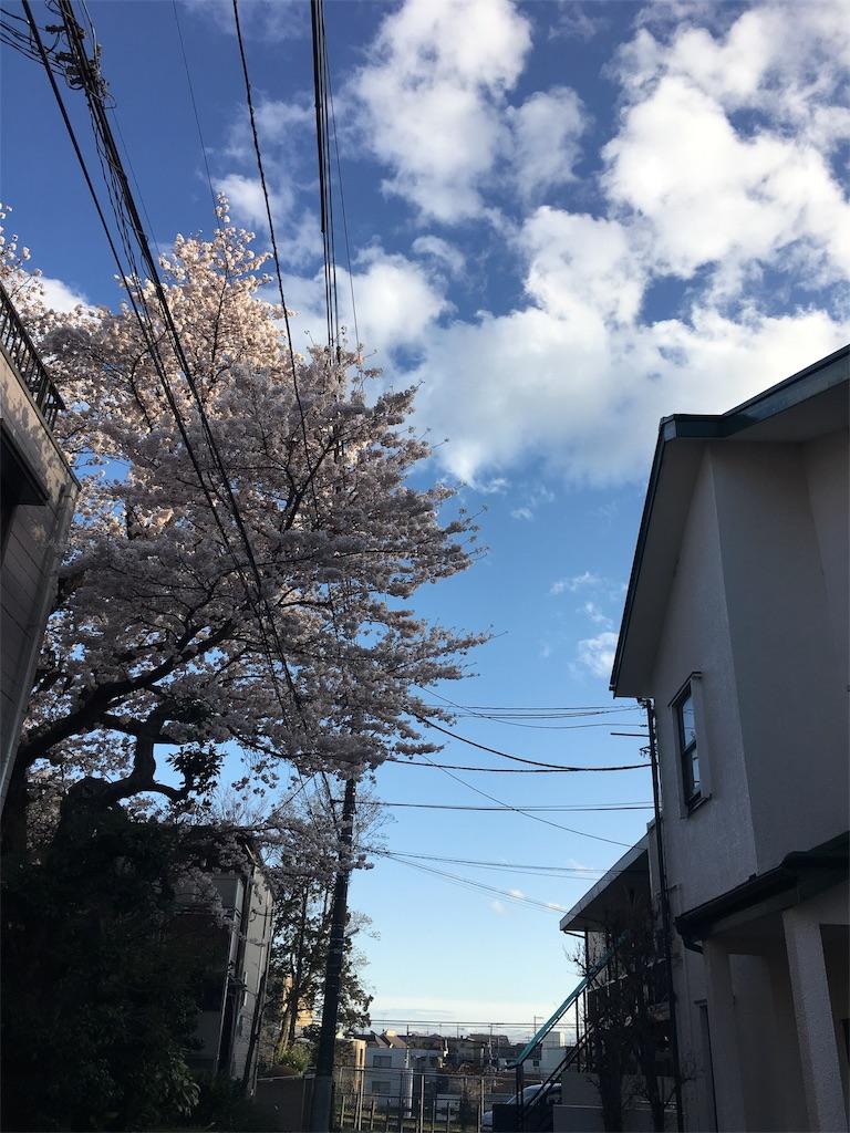 f:id:beauty-sky:20170410113126j:image