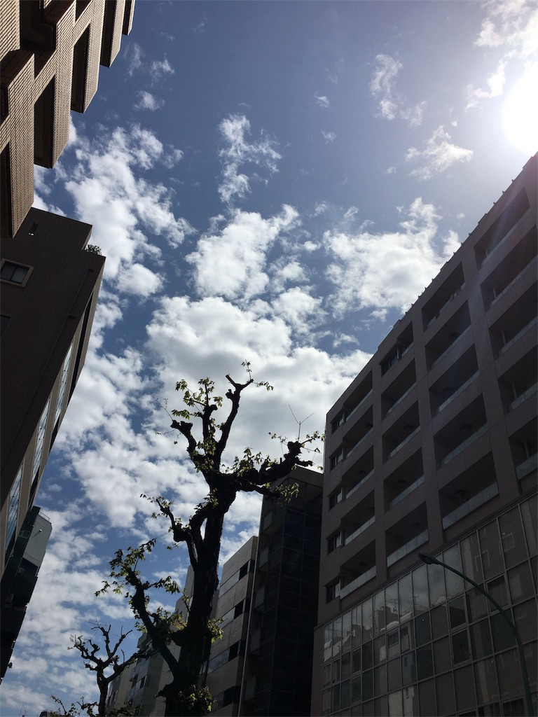 f:id:beauty-sky:20170415053340j:image