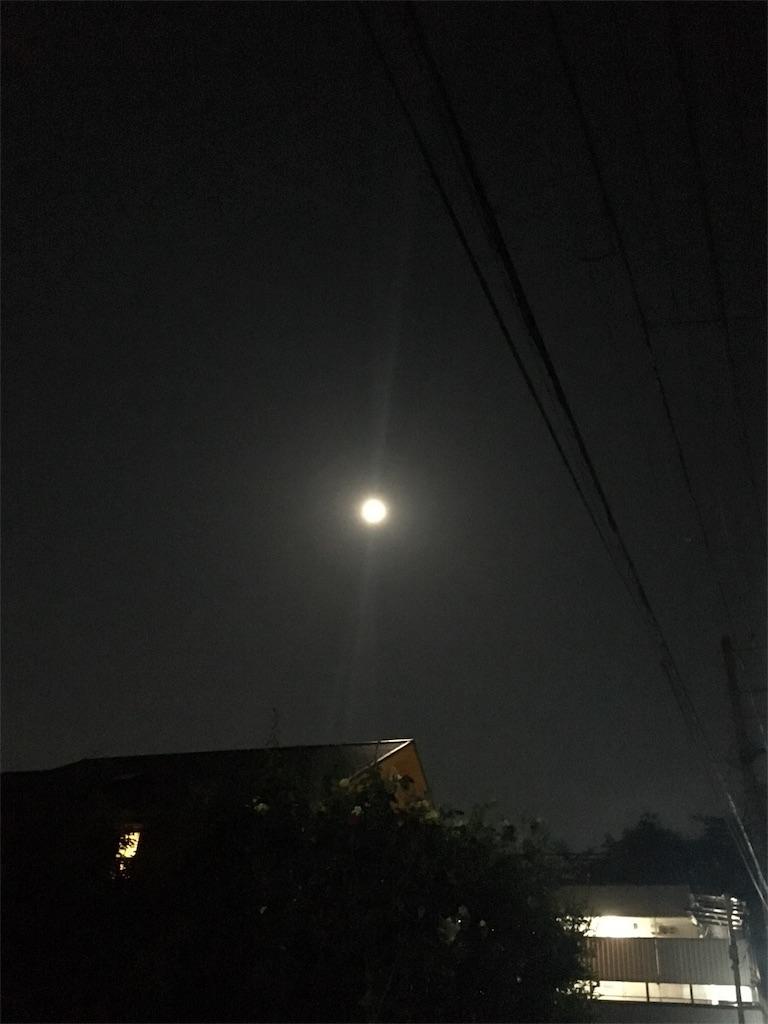 f:id:beauty-sky:20170512082009j:image