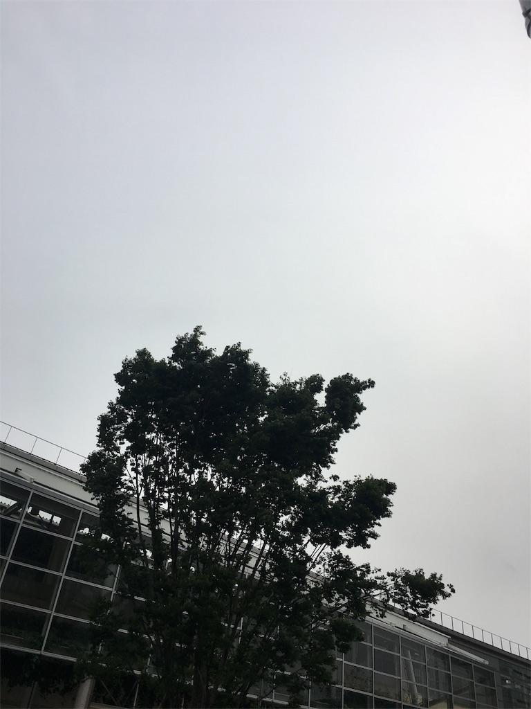 f:id:beauty-sky:20170512152930j:image
