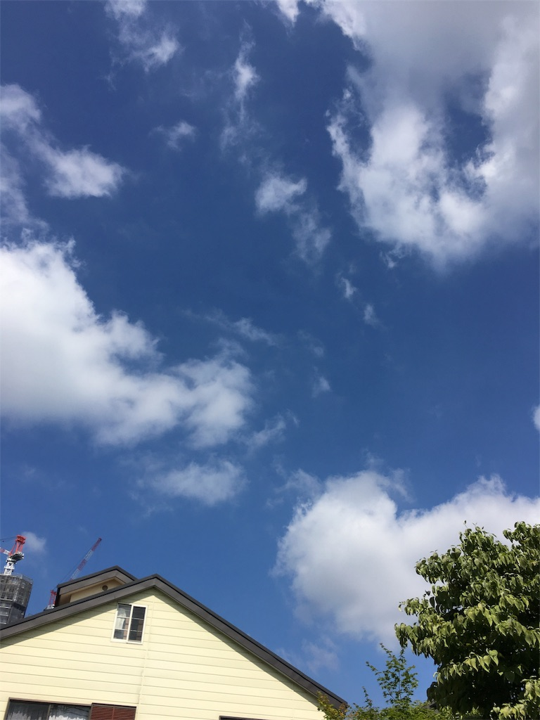 f:id:beauty-sky:20170715152454j:image