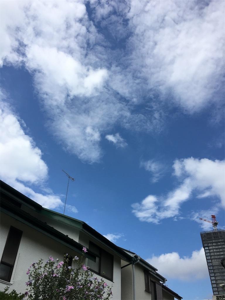 f:id:beauty-sky:20170728204600j:image