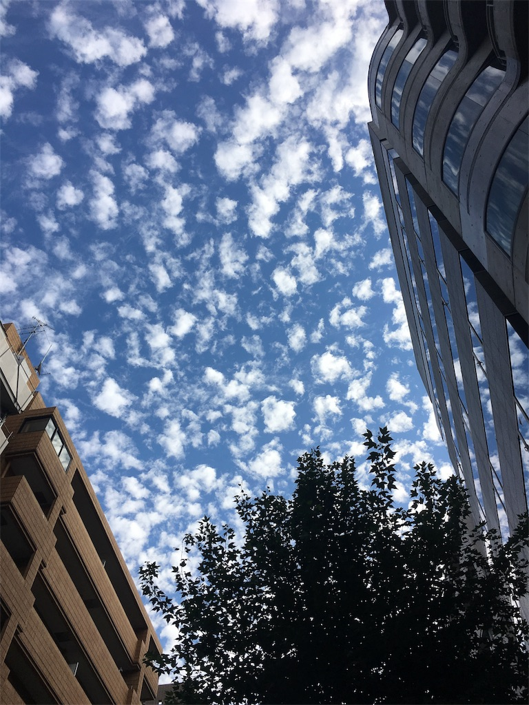 f:id:beauty-sky:20171109005740j:image