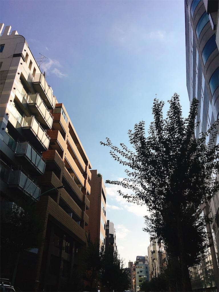 f:id:beauty-sky:20171109010143j:image