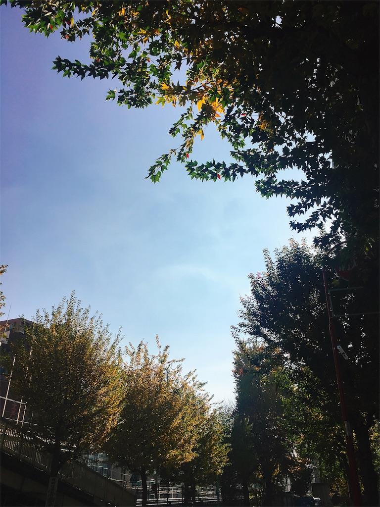 f:id:beauty-sky:20171129094109j:image