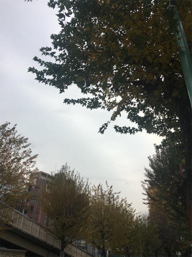 f:id:beauty-sky:20171130094353j:image