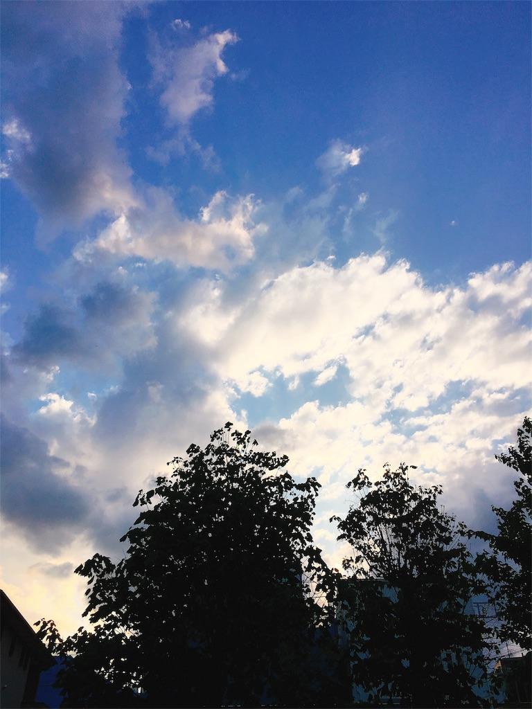 f:id:beauty-sky:20180507212225j:image