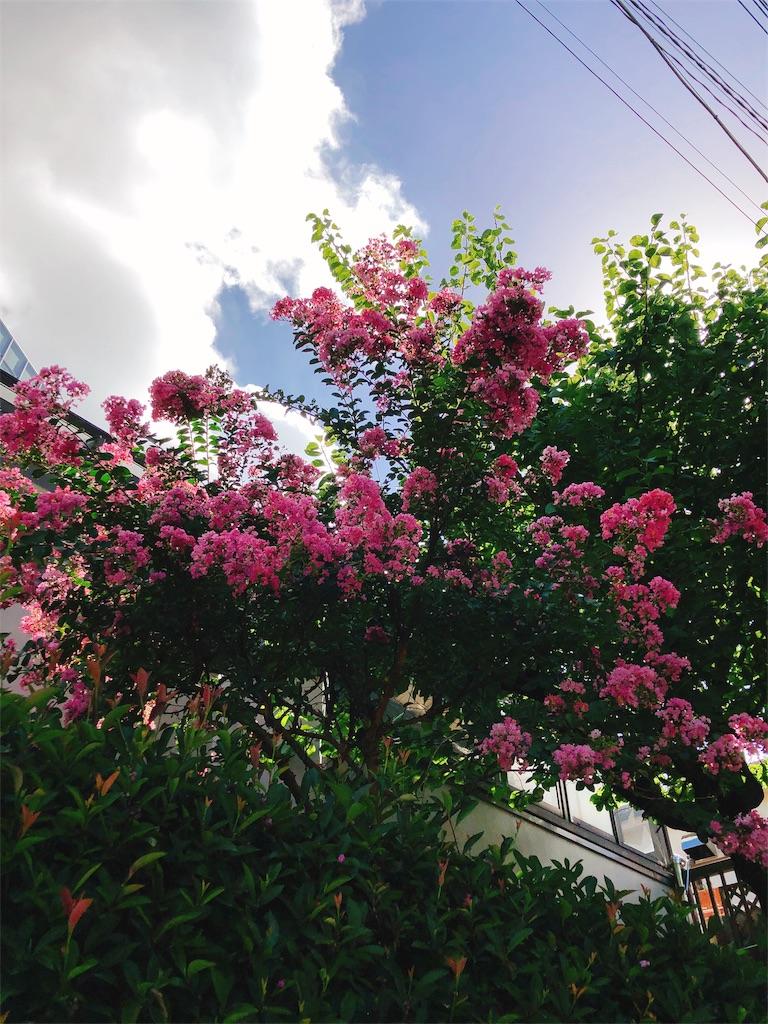 f:id:beauty-sky:20180831040128j:image