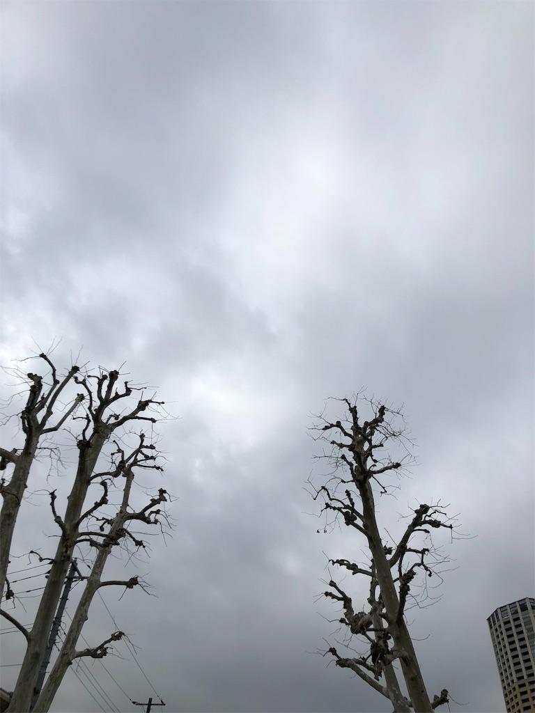 f:id:beauty-sky:20190219204820j:image