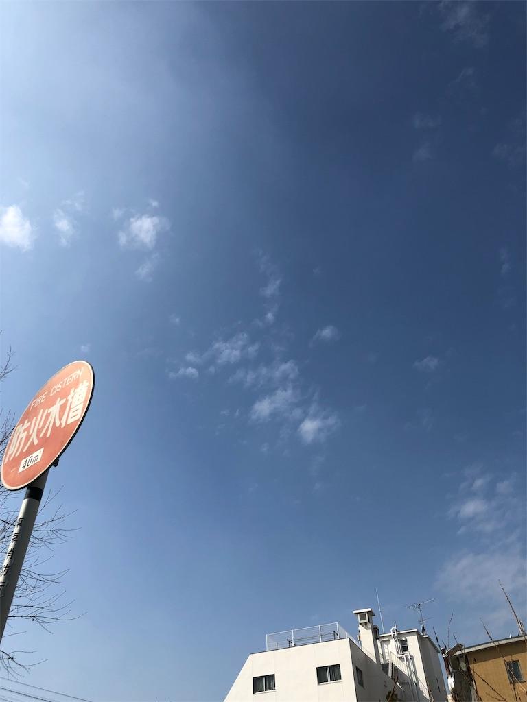 f:id:beauty-sky:20190225193255j:image
