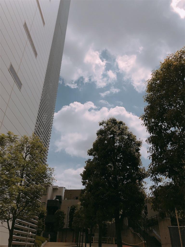 f:id:beauty-sky:20190531211611j:image