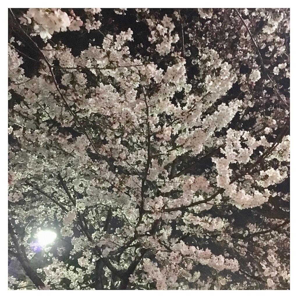 f:id:beauty_diary:20180328184636j:image
