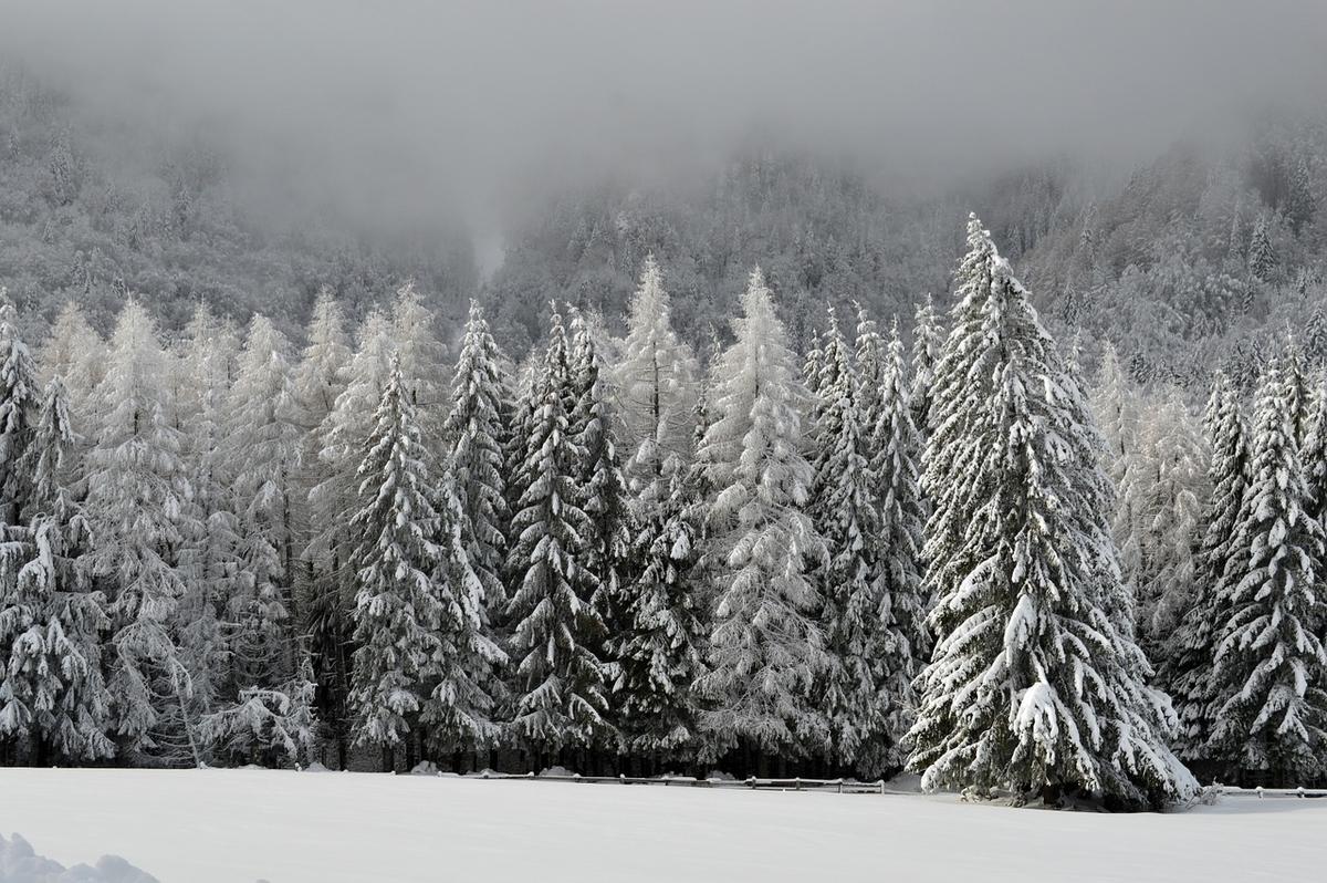 スキー場にはそれぞれの独自の魅力がある(イメージ)