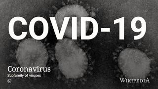新型コロナウイルスの影響を受けたキャンセルなどの対応は条件によって対応が分かれている