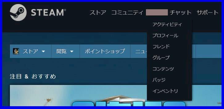 f:id:beginner_steamer:20201108161045j:plain:w500