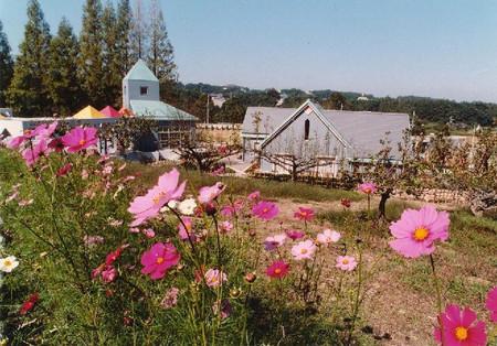 花の文化園 9月